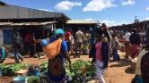 Piacozás és szafari – hétvégi pihenőn a magyar orvosok Afrikában