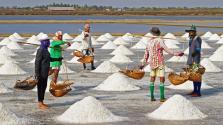 A só jó – hiánya cukorbetegséget és impotenciát okozhat