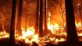 Drónokat vetnek be Spanyolországban az erdőtüzek megfékezésére