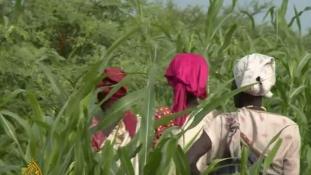 Brutális szexuális erőszakról számolnak be a dél-szudáni nők