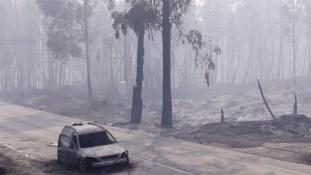 Nekem is meg kellett volna halnom – egy túlélő az erdőtűzről