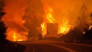 Pokollá vált az autópálya – 60 fölé nőtt az erdőtűz áldozatainak száma Portugáliában