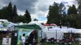 Medvék is fesztiváloznak Tusnádon
