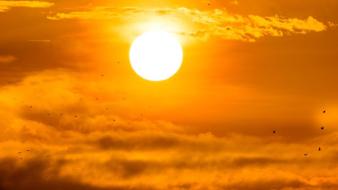 Mi volt a legmelegebb, amit Szaúd-Arábiában mértek?