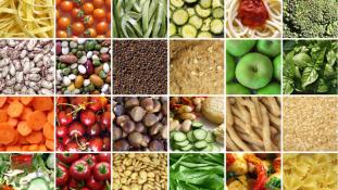 Hogyan bővíthető még tovább a sikeres agrárexport? – OTP Agrár