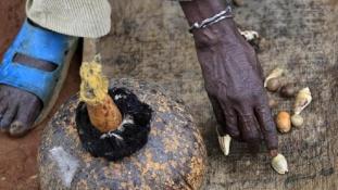 479 boszorkánnyal végeztek január óta Tanzániában