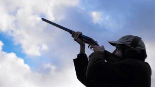 Több tízezren akarják lelőni Irmát Floridában