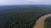 Drón vigyázza az Amazonas őserdeiben élő állatokat – videó