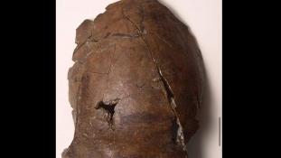 A világ első cunami-áldozatának koponyájára bukkanhattak Pápua Új-Guineában
