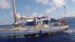 Öt hónap után mentettek ki két nőt a kutyáikkal együtt egy vitorlásról – videó