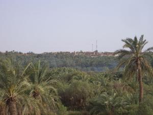 1280px-bahariya_village_through_the_forest