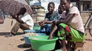 Két hétig más világ – magyar idegsebészek indultak műteni Malawiba