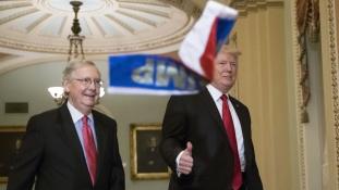 Orosz zászlókat vágott Trumphoz egy tüntető a washingtoni Kongresszusban – videó