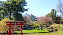 Hattagú családját irtotta ki egy férfi Japánban