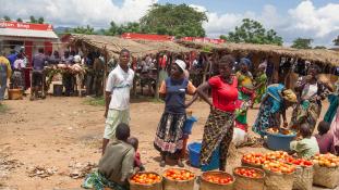 Vámpírvadászat és magyar orvosok – beszámoló Malawiból az Inforádióban