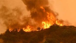 Tűzvész Kaliforniában, legkevesebb tíz halott – videó