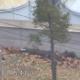 Korea: dezertálás golyózáporban – drámai videó az északi katona szökéséről