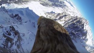 Lélegzetelállító madártávlat: ilyen sasként átrepülni a Francia Alpok felett – videó