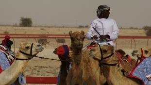 Tevéket plasztikázott – őrizetbe vettek egy orvost Szaúd-Arábiában