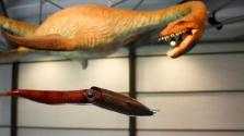 Több mint 200 millió éves plezioszauruszt rekonstruáltak Németországban