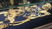 Bemutatták a több mint 3 és félmillió éves csontvázat Dél-Afrikában