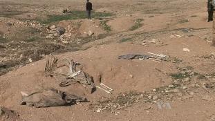 40 gyereket találtak egy tömegsírban Irakban