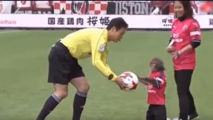 Majom a futballpályán – videó