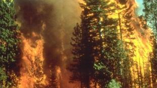 Szélvihar és tűzvész Dél-Kaliforniában – videó