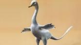 75 millió éves kétéltű dinó a Góbi-sivatagból – videó