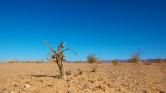 Pénzügyi tranzakciós adóval a klímaváltozás ellen