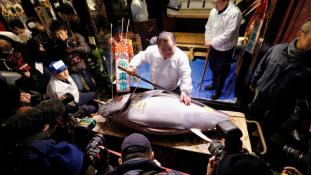 83 millióért adtak el egy halat