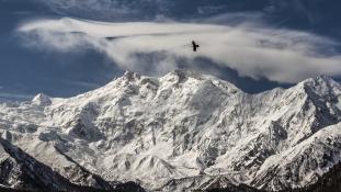 A bátor hegymászó nő megmenekült, de társát nem sikerült megmentenie – videó