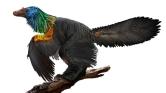 Holló nagyságú szivárványszínű dinó Kínából