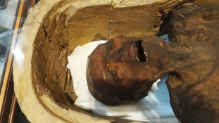 Kiállították Kairóban a sikító múmiát