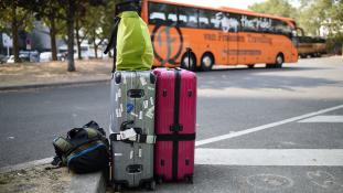 Hogyan hatástalanítsuk a reptéri szarkákat?