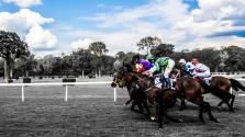 Forma1 stílusban indul lóverseny az Egyesült Királyságban