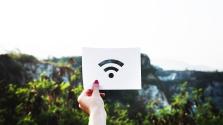 A WiFi és a természet: a kommunikációs hálózatok veszélyeztetik az állat- és növényfajokat