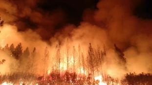 Nem bírnak a lángokkal Kaliforniában – videó