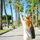 10+1 tipp, hogy tényleg üdülés legyen a nyaralás