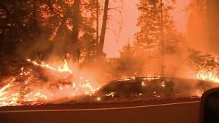 Minden idők legnagyobb tűzvésze pusztít Kaliforniában – videó