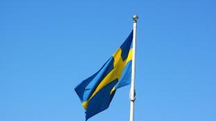 Zsidó Világkongresszus: tiltsák be a neonáci mozgalmat Svédországban!