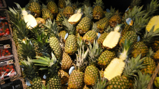 67 kiló kokain, ananászba rejtve – videó