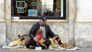 Apró kapszulaotthonok hajléktalanoknak