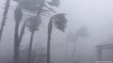 Óránként 280 kilométerrel csapott le Michael Floridára – videó