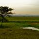 Nők építik újjá a Gorongosát Mozambikban – videó