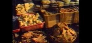 Cunami elÅ'tt – indonéziai mozaik