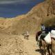 Így csábítják a turistákat a beduinok a Sínai-félszigeten – videó