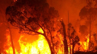 Tűzvihar Ausztráliában