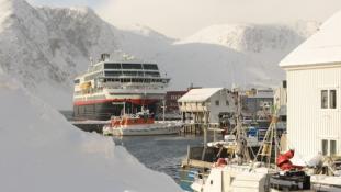 Döglött halak hajthatják a jövőben a norvég tengerjárókat