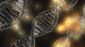 A DNS-turizmus lehet a jövő új trendje?